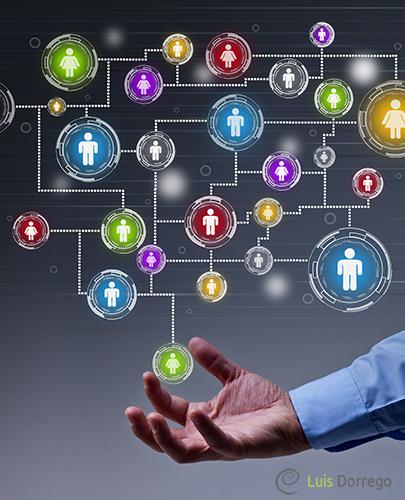 Acciones concretas que aporta la consultoría sistémica